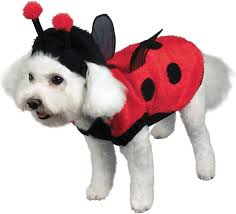 Funny Dog Costumes Halloween 45 Pooch Parade Costumes Images Pet Costumes