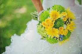 chrysanthemum flower for wedding flower chrysanthemums org