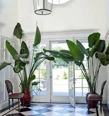plantation style how to achieve a plantation resort style at home pertaining