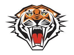 12 tiger temporary tattoos tigers spirit small