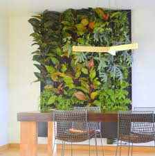 Garden Wall Systems by Phils And Ferns Vertical Garden U2014 Florafelt Vertical Garden Systems