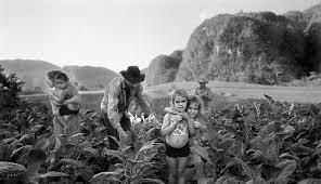 Documentary Photography Social Documentary Photography Wikiwand