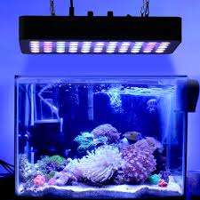 amazon com led aquarium light 165 watt dimmable full spectrum
