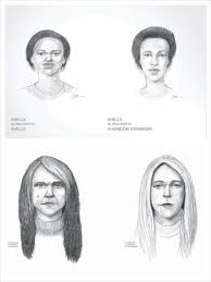 dove real beauty sketches the ad campaign of the year the