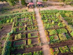 Botanical Gardens Dallas by An Outdoor Foodie Oasis To Spring Up In Dallas Your Inside Look