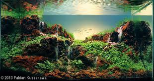 Aquascaping World A Collection Of Beautiful Aquascapes U2013 Kristelvdakker