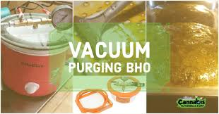 how to vacuum purge bho properly 5 best methods