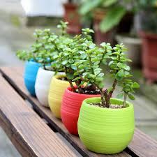 plastic flower pot succulent plant flowerpot for home office