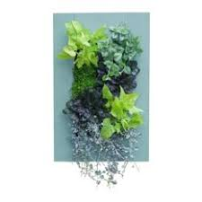 decorative outdoor wall planters houzz