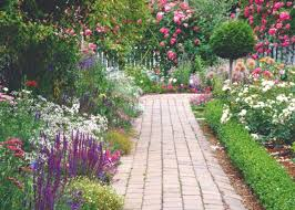 perfecting your path hgtv
