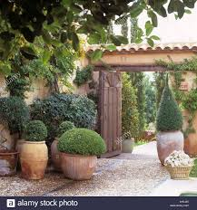 terracotta pots mediterranean villa entrance with terracotta pots stock photo