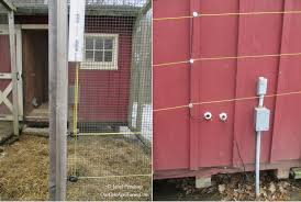 predator proofing your chicken coop and run
