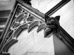 cat gargoyle national cathedral gargoyle wall decor