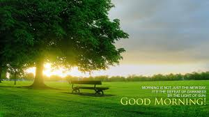 good morning fresh hd wallpapers hd wallpapers