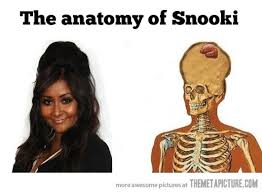 Snooki Meme - funny snookie hair jersey shore 1 the memes factory