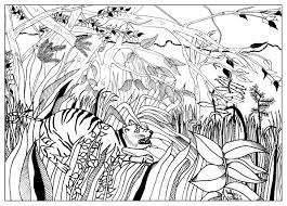 douanier by valentin valentin coloring pages for adults