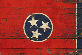 online store tennessee state vintage flag gift ideas home decor
