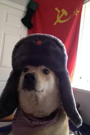 Doge Meme Template - in soviet doge wow is much than the single doge wow ussr shibe
