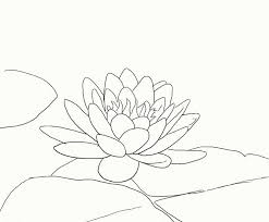 Simple Lotus Flower Drawing - 39 best tattoos images on pinterest drawings mandalas and lotus