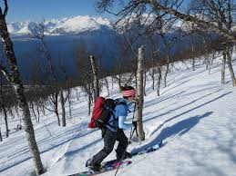 snowboarding in the lyngen alps will a proposed sk