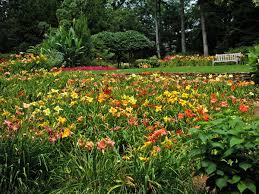 Botanical Gardens Images by Birmingham Botanical Gardens Encyclopedia Of Alabama