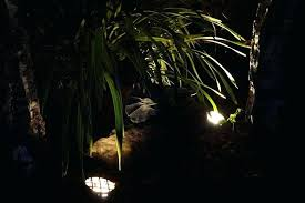 Landscape Up Lights Landscape Uplight Image Backyard Landscape Lighting Ideas Large