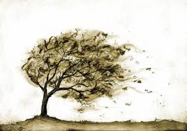 pics for wind blowing trees drawing cool artsy stuff
