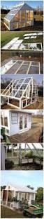 Greenhouses For Backyard Backyards Small Backyard Greenhouse Backyard Inspirations Small