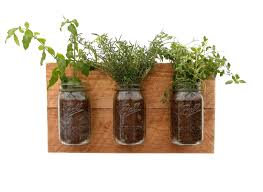 reclaimed wood herb planter hanging planter indoor herb