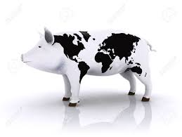 Animal World Map by Pork With World Map On The Skin Stock Photo Picture And Royalty