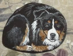 cat with australian shepherd hand painted rock of pet cat dog or animal
