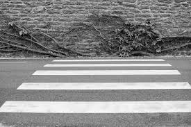 Download Black And White Floor by Free Images Black And White Wood Street Leaf Sidewalk Floor