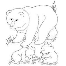 free woodland animal coloring pages yahoo image search results