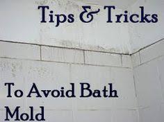 Remove Mold From Walls In Bathroom Bathroom Fungus Removal Srenterprisespune Com