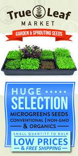 Greenhouse Starter Kits Best 25 Seed Starter Kit Ideas On Pinterest Seed Starter Ideas