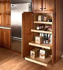pantry cabinet ideas kitchen pantry kitchen cabinets instchordance com