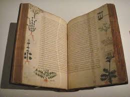 medica siege byzantine medicine apuleius books