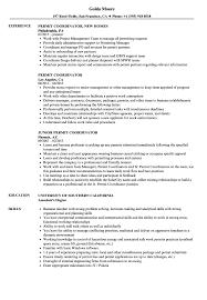 permit coordinator resume sles velvet