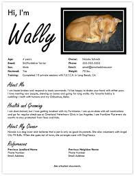 about me resume examples landing a dog friendly apartment create a pet resume petfinder