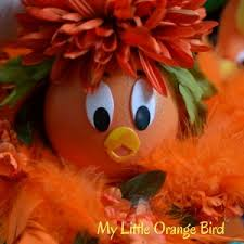 orange bird walt disney resort