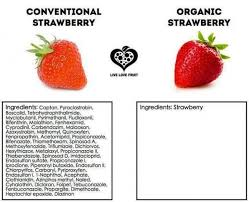 Organic Food Meme - organic food gmos greenmedinfo memes