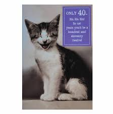 only 40 cat birthday card cat themed greeting cards mad