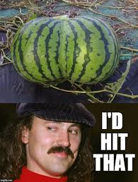 Watermelon Meme - the day gallagher s life changed imgflip