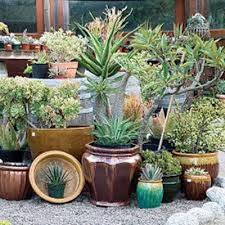 Garden Pots Ideas How To Arrange Garden Pots 5 Ideas For Fantastic Garden Design