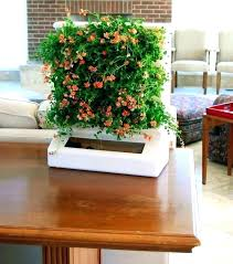 Indoor Gardening Ideas Vertical Garden Indoor Vertical Garden Indoor Indoor Flowers
