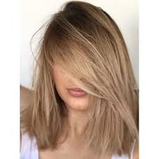 25 best ideas about highlights underneath on pinterest best 25 brown blonde hair ideas on pinterest brown hair blonde