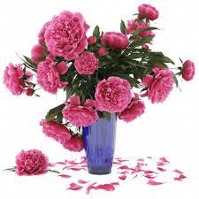 3d Flower Vase 3d Flower Vase Model 48 Free Download