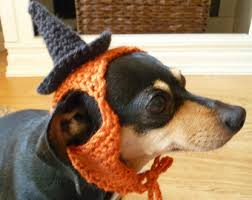 costumes for dogs etsy