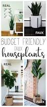 home plants decor where to buy budget friendly faux houseplants