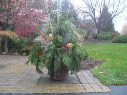 Winter Container Garden Ideas Container Gardening Winter Pots Decorating For